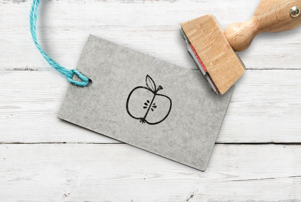 Stempel Apfel aufgeschnitten