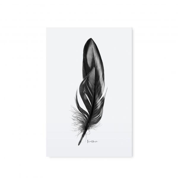 """Postkarte """"Feder"""" von Tafelgut"""