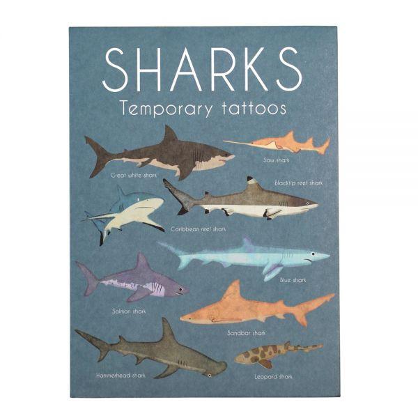 """Tattoos """"sharks"""", Haie"""
